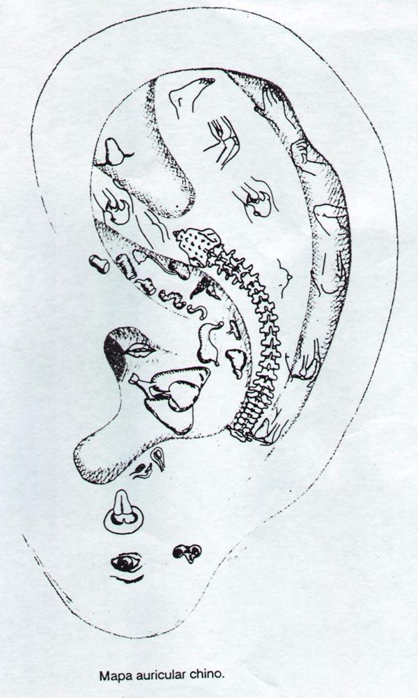 Auriculoterapia, terapia de la oreja
