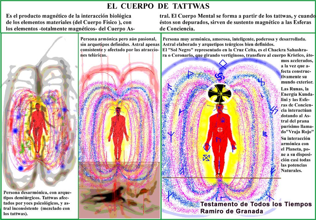 anatomía esotérica humana